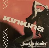 KINKINA / JUNGLE FEVER RARE GROOVE DJ HARVEY COSMIC