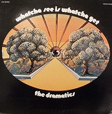 THE DRAMATICS / WHATCHA SEE IS WHATCHA GET RARE GROOVE A to Z
